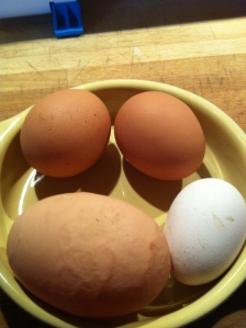 Not all eggs are equal. Mabel can lay an occasional Frankenegg, while Betty's are always small and white