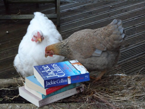 Chicks choose chick lit for #BookWeekScot