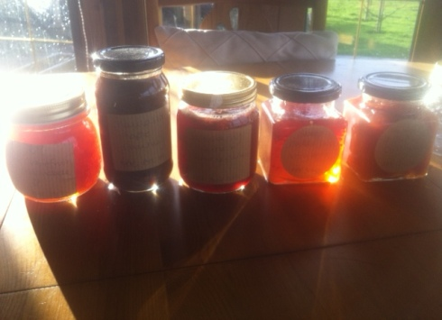 Jars of home preserves